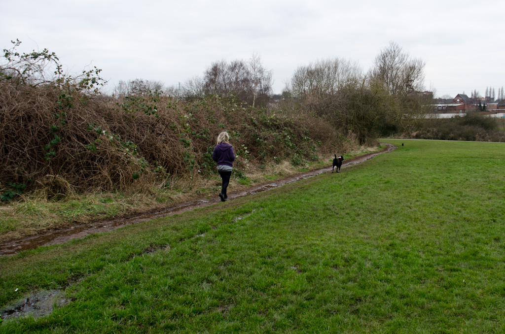 "The Hazelwell River follows what was once a path down the side of the park. This path has been mostly washed down to pebbled and bricks and the surrounding grass is sodden and feeds the secondary ""stream"" in the copse."
